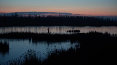 "Frank Brehe ""Vor dem Sonnenaufgang"""
