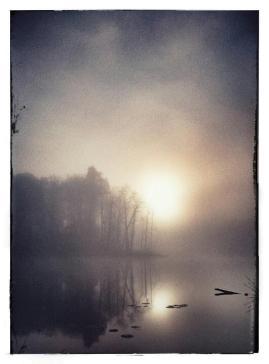 """Frank Brehe """"Schweingartensee"""""""